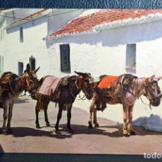 Postales: COSTA DEL SOL - MIJAS - BURROS TAXI - 1133. Lote 174513193