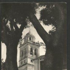 Postales: ALMUÑECAR-LA TORRE-ED·POSTAL MADRID-VER REVERSO-(61.928). Lote 175517808