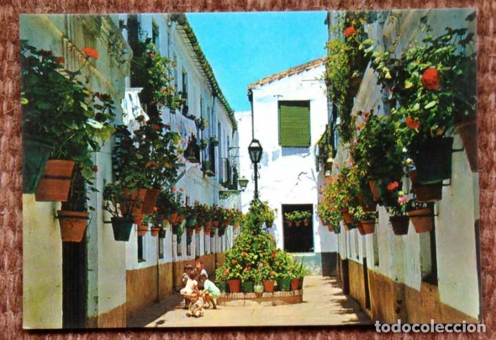 COSTA DEL SOL - CALLE TIPICA (Postales - España - Andalucia Moderna (desde 1.940))