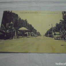 Postales: SANLUCAR DE BARRAMEDA EL HERMOSO PASEO DE LA CALZADA.EDICION ELICIO SERRANO. Lote 178046365