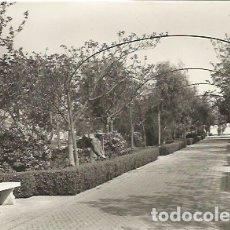 Postales: PORCUNA - BELLO RINCÓN DEL PARQUE - Nº 1006 ED. ARRIBAS. Lote 178974995