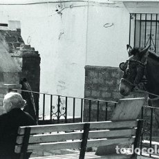 Postales: NEGATIVO ESPAÑA MÁLAGA MIJAS 1979 KODAK 35MM NEGATIVE SPAIN FOTO COSTA DEL SOL. Lote 180018557