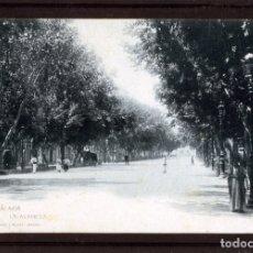 Postales: MALAGA-POSTAL HAUSER Y MENET-LA ALAMEDA Nº179-VER FOTO ADICIONAL DEL REVERSO-LEER DESCRIPCIÓN .. Lote 180158355