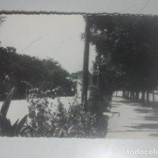 Postales: VILLACARRILLO, JAÉN - PASEO: VISTA LATERAL - F. MADRID, 16 - ANTIGUA POSTAL FOTOGRÁFICA. Lote 180202941