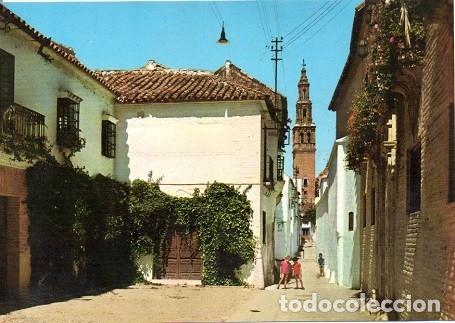 ECIJA - 2006 CALLE DE FELIPE ENCINAS Y TORRE DE SAN GIL (Postales - España - Andalucia Moderna (desde 1.940))