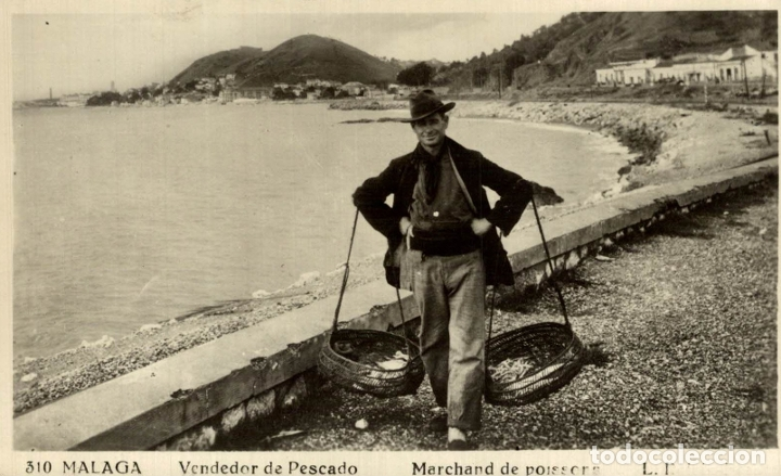 310 MÁLAGA VENDEDOR DE PESCADO (Postales - España - Andalucía Antigua (hasta 1939))