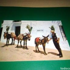 Postales: ANTIGUA POSTAL DE MIJAS. COSTA DEL SOL. AÑOS 60. PARADA DE BURROS. Lote 194226515
