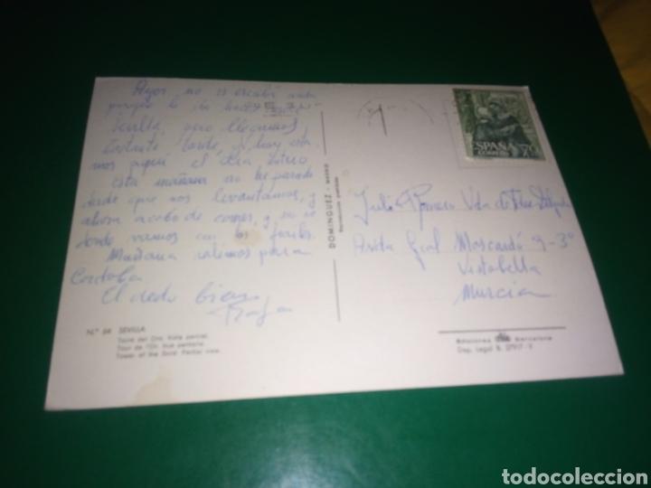 Postales: Antigua postal de Sevilla Años 60 - Foto 2 - 194236836