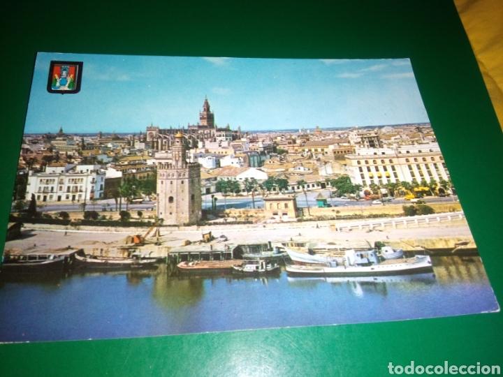 ANTIGUA POSTAL DE SEVILLA AÑOS 60 (Postales - España - Andalucia Moderna (desde 1.940))