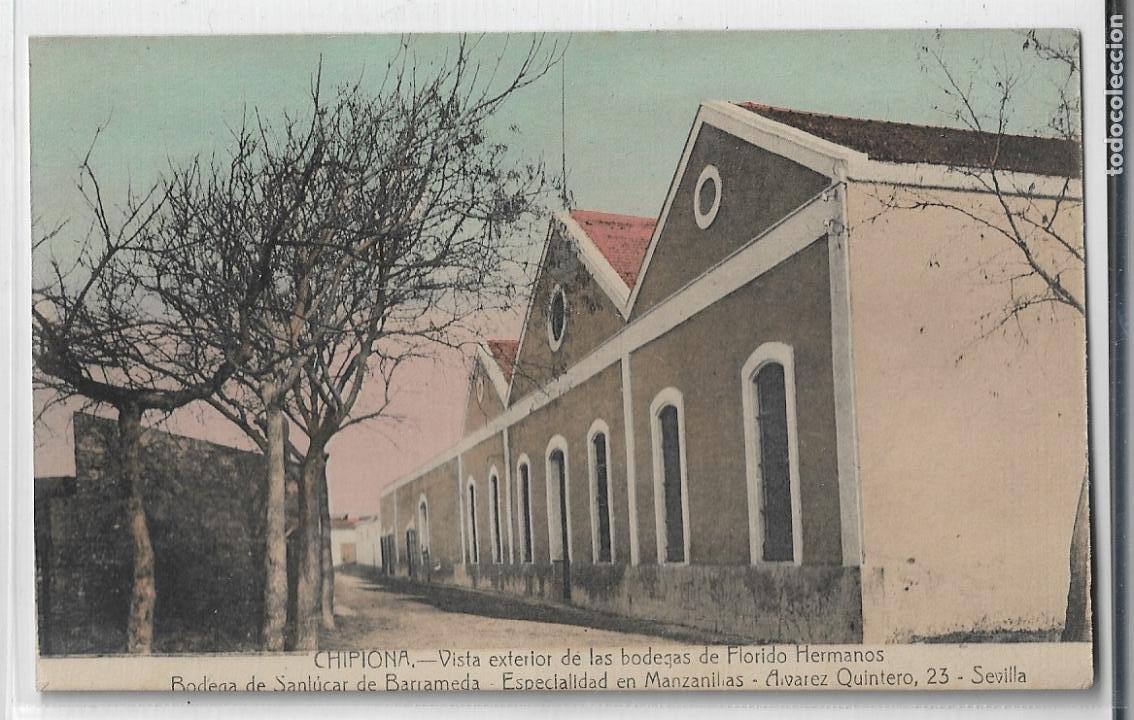 CHIPIONA - BODEGAS DE FLORIDO HERMANOS - P27142 (Postales - España - Andalucía Antigua (hasta 1939))