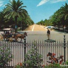 Postales: [POSTAL] PASEO DE LA CALZADA. SANLÚCAR DE BARRAMEDA (CÁDIZ) (SIN CIRCULAR). Lote 194543333