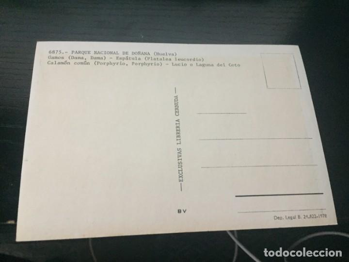 Postales: POSTAL DE - HUELVA - PARQUE DE DOÑANA - BONITAS VISTAS - LA DE LA FOTO VER TODAS MIS POSTALES - Foto 2 - 195377378