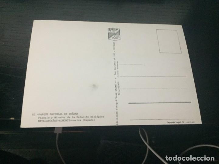 Postales: POSTAL DE - HUELVA - PARQUE DE DOÑANA - BONITAS VISTAS - LA DE LA FOTO VER TODAS MIS POSTALES - Foto 2 - 195377425