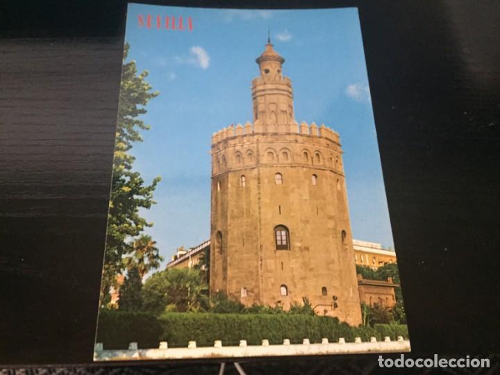 POSTAL DE - SEVILLA - TORRE DEL ORO- BONITAS VISTAS - LA DE LA FOTO VER TODAS MIS POSTALES (Postales - España - Andalucia Moderna (desde 1.940))