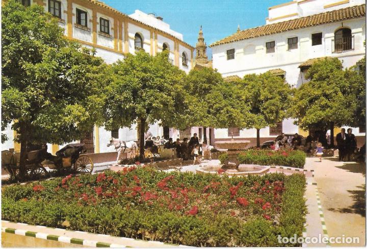 == B1502 - POSTAL - SEVILLA - PLAZA DE DOÑA ELVIRA (Postales - España - Andalucia Moderna (desde 1.940))