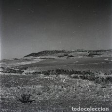 Postales: NEGATIVO ESPAÑA CÁDIZ MEDINA SIDONIA 1970 KODAK 55MM NEGATIVE GRAN FORMATO SPAIN FOTO PHOTO. Lote 195471646