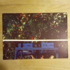 Postales: FOTOGRAFÍA DE SERGIO LIRA, LA CARBONERÍA, SEVILLA. POSTAL SIN CIRCULAR, AÑO 1988.. Lote 196942518