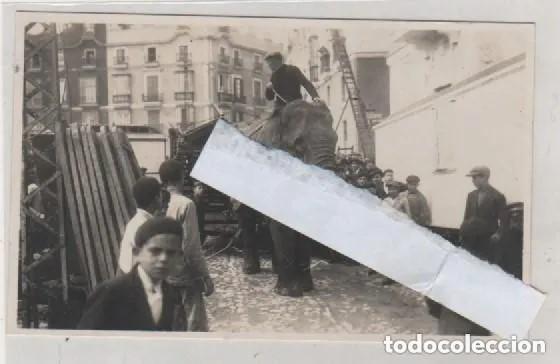 POSTAL FOTOGRÁFICA. CADIZ. CIRCO HAGENBECK DE HAMBURGO. SIN CIRCULAR. EL TREBOL CADIZ. (Postales - España - Andalucía Antigua (hasta 1939))