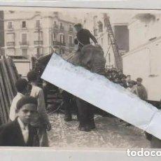 Postales: POSTAL FOTOGRÁFICA. CADIZ. CIRCO HAGENBECK DE HAMBURGO. SIN CIRCULAR. EL TREBOL CADIZ.. Lote 197108546