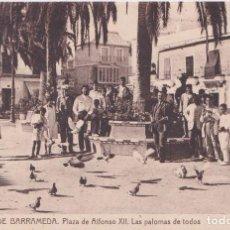 Postales: SANLUCAR DE BARRAMEDA (CADIZ) - PLAZA DE ALFONSO XII.LAS PALOMAS DE TODOS. Lote 208949051