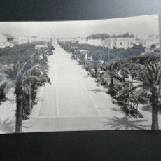 Postales: SANLUCAR DE BARRAMEDA, CÁDIZ. PASEO DE LA CALZADA AÑOS 60. EDICIONES ARRIBA. Lote 209288807