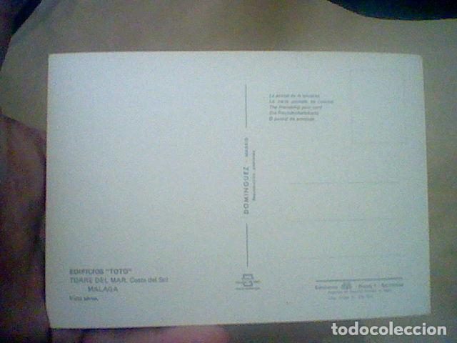 Postales: TORRE DEL MAR EDIF TOTO ED DOMINGUEZ CIRCULADA S/Nº S/C 15 X 10 CMS APROX ***** - Foto 2 - 210225520