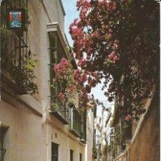 Postales: [POSTAL] CALLE DE LA PIMIENTA. SEVILLA (SIN CIRCULAR). Lote 211456077