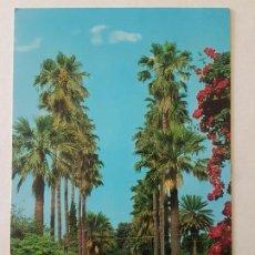 Postales: MELILLA PARQUE HERNANDEZ POSTAL. Lote 212471768