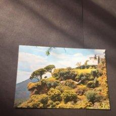 Postales: POSTAL DE HUELVA ALAJAR PEÑA DE LOS ANGELES - BONITAS VISTAS - LA DE LA FOTO VER TODAS MIS POSTALES. Lote 219569736