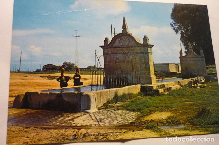 POSTAL HINOJOSA DEL DUQUE.-PILAR (Postales - España - Andalucía Antigua (hasta 1939))