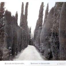 Postales: GRANADA. 83 ENTRADA DEL GENERALIFE. ROISIN. NUEVA. BLANCO/NEGRO. Lote 221635558