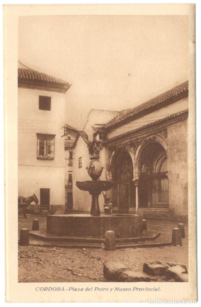 CÓRDOBA. PLAZA DEL POTRO Y MUSEO PROVINCIAL. ED. GONZALEZ: ESTANCO GRAN CAPITÁN. (Postales - España - Andalucía Antigua (hasta 1939))
