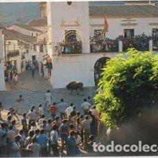 Cartes Postales: POSTAL ANTIGUA DE GRAZALEMA. CADIZ. PZA. DE ESPAÑA. TORO DE CUERDA P-ANGRAZ-006. Lote 55044725