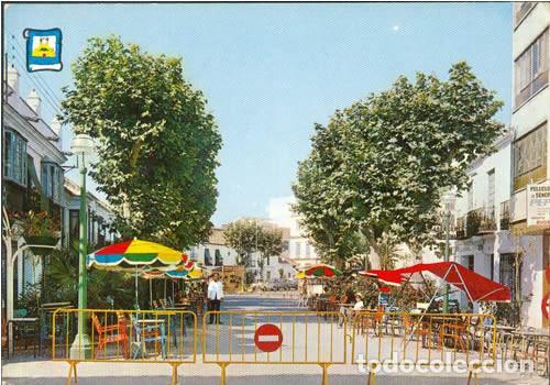 POSTAL ESTEPONA PASEO LOS BARES 1969 MALAGA (Postales - España - Andalucia Moderna (desde 1.940))
