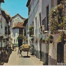 Cartoline: GRANADA, ALBAICIN, CALLE TÍPICA - A.ZERKOWITZ Nº428 - CIRCULADA. Lote 271901693