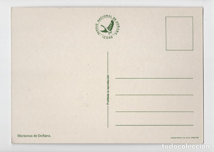 Postales: Parque Natural de Doñana ♦ Edición ICONA, 1981 - Foto 2 - 277043293