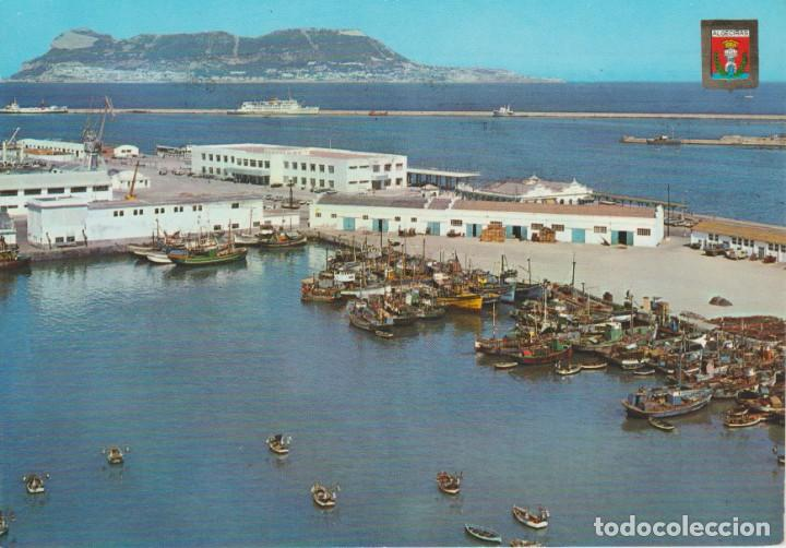 (53) ALGECIRAS . VISTA DE LA BAHIA DE ALGECIRAS Y PEÑON DE GIBRALTAR AL FONDO (Postales - España - Andalucia Moderna (desde 1.940))