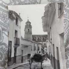 Postales: ANTIGUA POSTAL.TIPICA CALLE.VELEZ RUBIO.ALMERIA. FOTO LOPEZ Nº 31. Lote 277645708