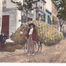 Postales: SEVILLA, UN VENDEDOR DE PAJA. ED. PURGER & CO. TOMAS SANZ. Nº 90. REVERSO SIN DIVIDIR. Lote 288394053
