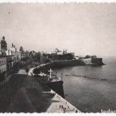 Postales: POSTAL- CADIZ-ALAMEDA DE APODACAR. Lote 295177713