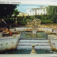 Postales: POSTAL PRIEGO DE CORDOBA .-FUENTE REY. Lote 295514678