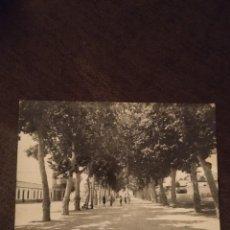 Postales: TORRE DEL MAR. ALAMEDA LARIOS. SIN CIRCULAR. CREACIONES IMPERIO DE 1959. RARA. CAR. Lote 295526733
