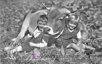 POSTAL CIRCULADA AÑO 1954 SUIZA NIÑOS CON UNA VACA FRISONA (Postales - Postales Temáticas - Animales)
