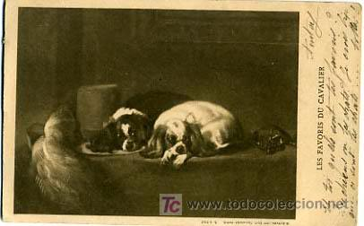 POSTAL ILUSTRADA, PERROS Y PERRITOS P12531 (Postales - Postales Temáticas - Animales)