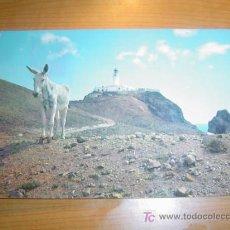 Postales: POSTAL ESPAÑA PAISAJE TIPICO. Lote 5776387