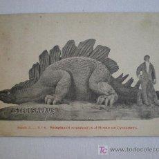 Postales: SERIE A. Nº 8. ESTEGOSAURI RECONSTRUIT EN EL MUSEO DE CATALUNYA. STEGOSAURUS.. Lote 11728523