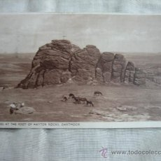 Postales: PONIES AT THE FOOT HAYTOR ROCKS DARTMOOR CIRCULADA. Lote 8562119