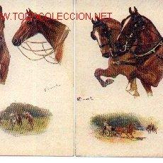 Postales: 7-CAB2. LOTE DE 2 POSTALES COLOREADAS DE CABALLOS. Lote 3891444