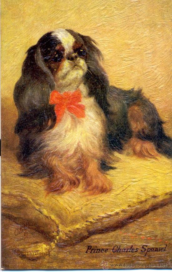 PERRO. RAZA PRICE CHARLES SPANIEL. DIBUJO. POSTAL COLOR INGLESA, C. 1925. (Postales - Postales Temáticas - Animales)