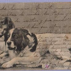 Postales: TARJETA POSTAL ANTIGUA DE ANIMALES. REVERSO NO DIVIDIDO. Lote 12170192